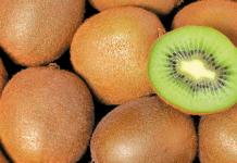 kiwi-1_b
