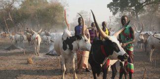 Νότιο Σουδάν: 34 νεκροί με αφορμή μια ζωοκλοπή, σύμφωνα με τις αρχές της χώρας