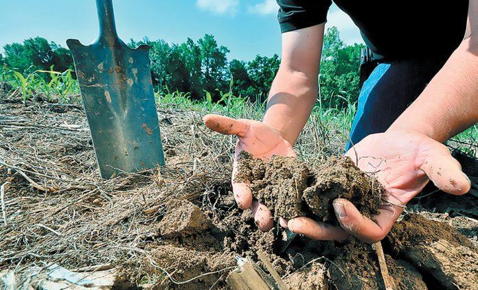 soil-4-5