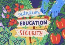 """Το κίνημα """"Sustainable Food in Greece"""" και η μάχη για γαστρονομία με στόχο την αειφορία"""