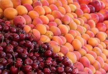 Δέσμευση 2,6 τόνων φρούτων σε επιχείρηση του Ρέντη