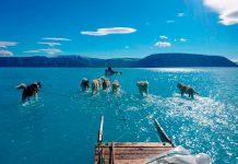 Η φωτογραφία που προκαλεί σοκ: Μέσα σε λίγες ώρες έλιωσε το 40% των πάγων της Γροιλανδίας