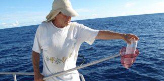 Ιταλία: Οι ψαράδες δεν θα πετούν πλέον τα πλαστικά απορρίμματα που ψαρεύουν πίσω στη θάλασσα