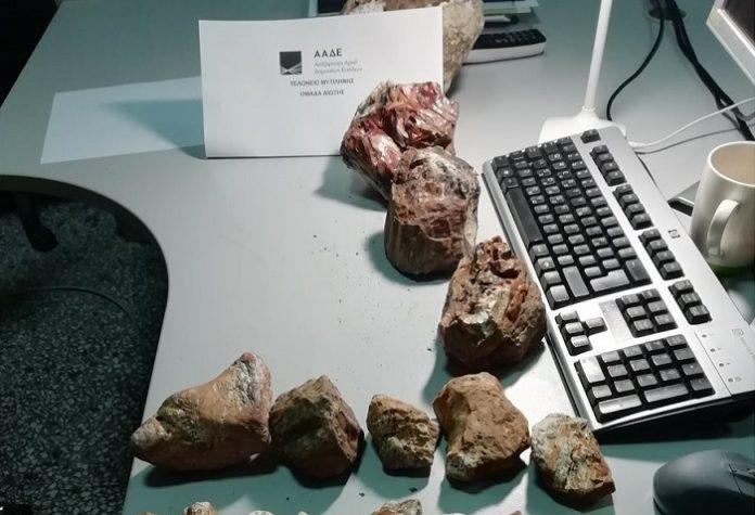 Λέσβος: Kομμάτια κορμών από το απολιθωμένο δάσος σε αποσκευές τουριστών