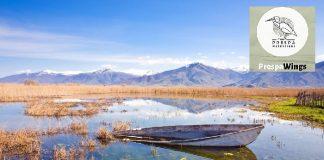 Ορνιθοπαρατήρηση μέσα από κινητό και τάμπλετ στο Εθνικό Πάρκο Πρεσπών