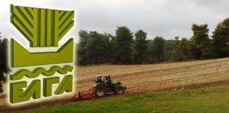 Οι αντιδράσεις των Θεσσαλών αγροτών στις εξαγγελίες Βορίδη για ανάμειξη ιδιωτικών στον ΕΛΓΑ