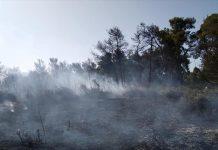 Εύβοια: Μεγάλη πυρκαγιά στα Μανίκια - Εκκενώνεται οικισμός