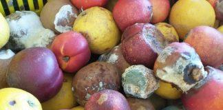 Κατάσχεση ακατάλληλων λεμονιών και ροδάκινων στον Πειραιά