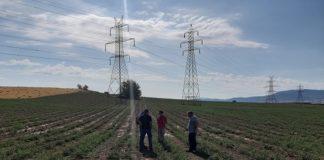 Δ. ΝΟΜΙΚΟΣ και ERGO στο πλευρό αγροτών που επλήγησαν από την πρόσφατη χαλαζόπτωση