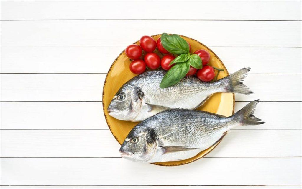 Ψάρια ιχθυοτροφείου vs θάλασσας: όσα πρέπει να ξέρετε