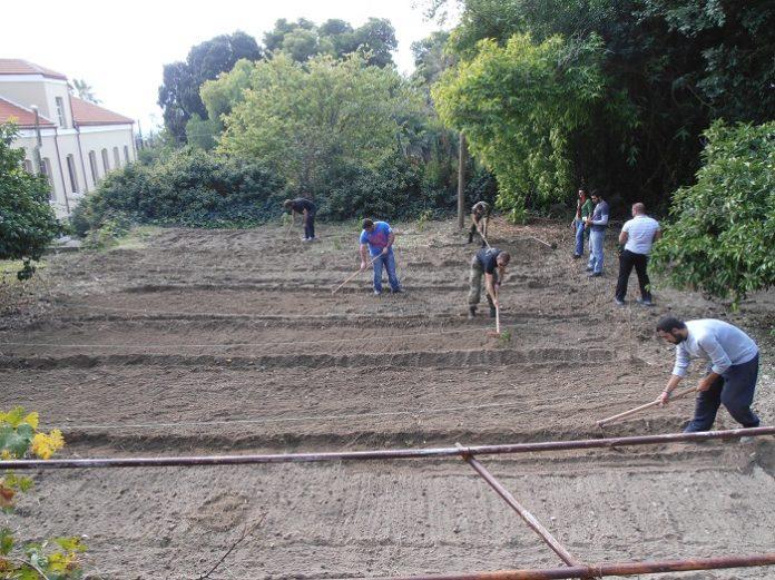 Από 2 έως 16 Σεπτεμβρίου οι αιτήσεις εγγραφής στην αγροτική ΕΠΑΣ της Κρήτης για θερμοκηπιακές καλλιέργειες