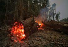 Αμαζόνιος: Οι βροχές δεν θα σβήσουν τις φωτιές προτού περάσουν αρκετές εβδομάδες