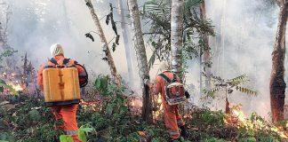 «Αμαζόνιος SOS»: 2.500 νέες εστίες φωτιάς μέσα σε 48 ώρες