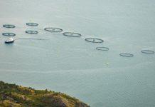 Η Δανία ανακοίνωσε περιορισμούς στις υδατοκαλλιέργειες με στόχο την προστασία του περιβάλλοντος