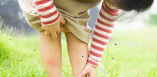Ιός Δυτικού Νείλου: Σε ποιες νέες περιοχές εντοπίστηκαν μολυσμένα κουνούπια