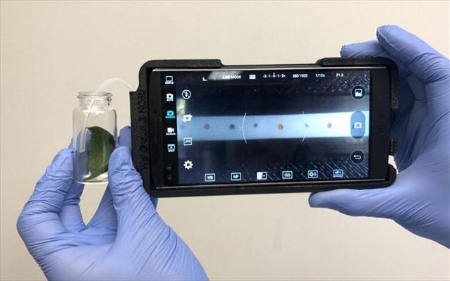 To smartphone γίνεται εργαλείο διάγνωσης παθήσεων των φυτών