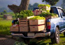 Agro Classic- Agro Classic Plus: Νέα προγράμματα ασφάλισης αγροτικών οχημάτων από την INTERAMERICAN
