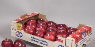 Έναρξη της εμπορικής περιόδου με ευρωπαϊκή διάκριση για τον ΑΣ Ζαγοράς Πηλίου