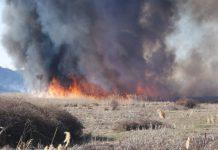 Απαγόρευση καύσης γεωργικών υπολειμμάτων και ποινές για παραβάτες στον δήμο Δέλτα