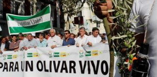 Τριάντα χιλιάδες ελαιοπαραγωγοί διαδήλωσαν στους δρόμους της Μαδρίτης