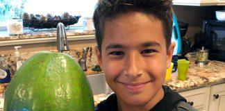 Χαβάη: Ρεκόρ Γκίνες για το πιο βαρύ αβοκάντο στον κόσμο