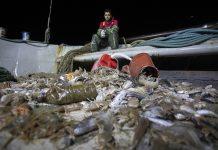 Δίχτυα γεμάτα με ψάρια αλλά και πλαστικό βγάζουν οι τράτες