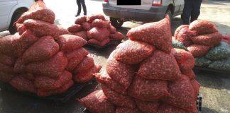 Καβάλα: Σύλληψη για παράνομη μεταφορά οστράκων ακατάλληλων για ανθρώπινη κατανάλωση