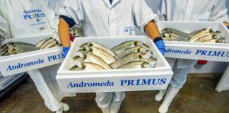 Ο Όμιλος Andromeda ανακοίνωσε την ολοκλήρωση της εξαγοράς του Νηρέα και της Σελόντα