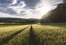Προγράμματα κατάρτισης αγροτών στον ΕΛΓΟ-ΔΗΜΗΤΡΑ στη Ξάνθη