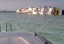 Ρουμανία: Σε εξέλιξη η επιχείρηση διάσωσης 14.600 προβάτων από πλοίο που έχει πάρει κλίση