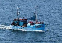 Θετικές αποφάσεις για την αλιεία σε Βουλγαρία και Ρουμανία από την Γενική Επιτροπή Αλιείας