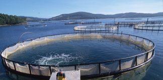 ΥΠΑΑΤ: Πληρωμές 8 εκατ. ευρώ για τις υδατοκαλλιέργειες