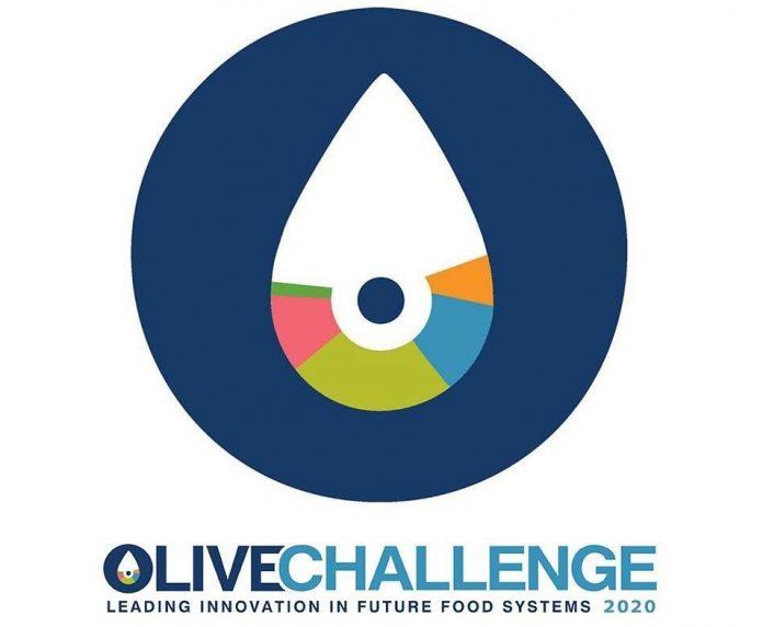 Από 16/12 έως 7/1 η συμμετοχή στον 2ο διαγωνισμό του ελαιοκομικού τομέα Olive Challenge