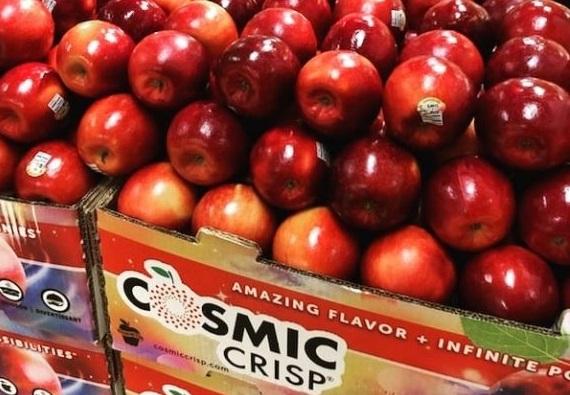 Νέα ποικιλία μήλου αντέχει έως και 1 χρόνο στο ψυγείο