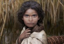 «Τσίχλα» 5.700 ετών αποκαλύπτει το πρόσωπο μιας προϊστορικής Σκανδιναβής