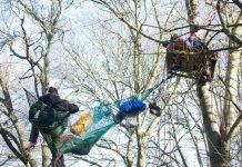 Βρετανία: Διαδηλωτές σκαρφάλωσαν σε δέντρα για να προστατεύσουν δάσος απ' όπου θα περάσει σιδηροδρομική γραμμή