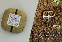 Καινοτόμα συσκευασία αβγών, που φυτεύεται στη γη και δίνει ...φακές