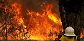 Οι πυρκαγιές στην Αυστραλία προκαλούν αύξηση-ρεκόρ του CO2 στην ατμόσφαιρα