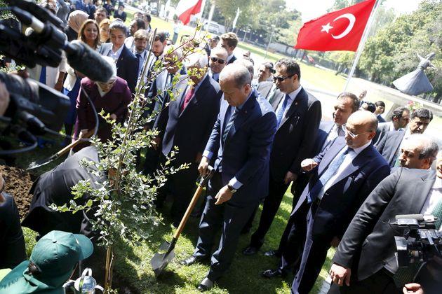 Τουρκία: «Νεκρό» το 90% των 11 εκατ. δένδρων που φυτεύτηκαν ως «ανάσα για το μέλλον»
