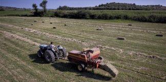Αγρότες-κτηνοτρόφοι: Τι θα ζητήσουν την Τρίτη από τα κοινοβουλευτικά κόμματα