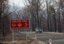 Αυστραλία: Οι πυρκαγιές κατέστρεψαν το ένα πέμπτο των δασών, σύμφωνα με μελέτες