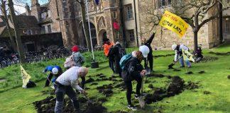 Βρετανία: Ακτιβιστές για το κλίμα σκάλισαν το γρασίδι του Τρίνιτι Κόλετζ του Κέιμπριτζ