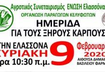 Ημερίδα για τους ξηρούς καρπούς στην Ελασσόνα την Κυριακή 9 Φεβρουαρίου