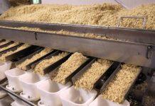 Κατατέθηκε ο φάκελος για τη Διεπαγγελματική Ρυζιού