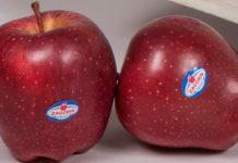O ΑΣ Ζαγοράς συμβουλεύει: Τα μήλα ενισχύουν σημαντικά το ανοσοποιητικό