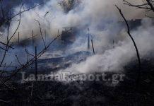 Καίγεται ποιμνιοστάσιο στα Καμένα Βούρλα (φωτός)