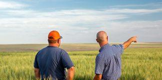 Την πρώτη ασφαλιστική κατηγορία επέλεξε το 87% των αγροτών μέσω ε-ΕΦΚΑ
