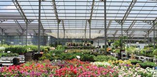 Σλοβενία: Ο κορωνοϊός «μαραίνει» τα φυτώρια που καταγράφουν ζημιές και μείωση πωλήσεων