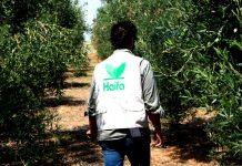 Το ευχαριστήριο video της Ηaifa Hellas στους Έλληνες αγρότες και αγρότισσες