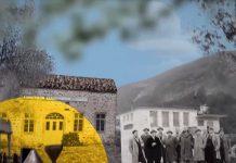 ΠΙΟΠ: «Ταξίδι» στο Μουσείο Ελιάς και Ελληνικού Λαδιού και στο Βιομηχανικής Ελαιουργίας